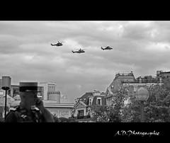 Dfil Hlicoptres (Alexis.D) Tags: white black paris france noir military tiger 14 parade puma fte colonel et blanc militaire nationale gendarme dfil gendarmerie 2011 juilllet hlicoptere