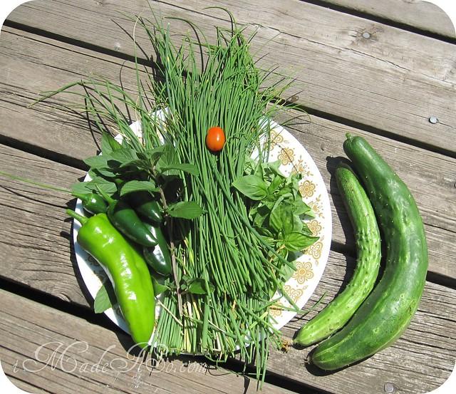 garden veggies and herbs
