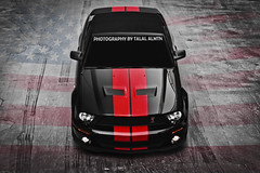 (Talal Al-Mtn) Tags: kuwait fordmustang mustanggt q8 fordgt kwt shelbygt500 mustangsaleen mustangshelby talalalmtn photographybytalalalmtn mustang2011 mustangshelby2011 mustangshelby2009 supersnake2010