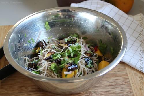 Roasted Eggplant, Mango & Soba Noodle Salad