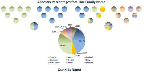 Ancestry Pie: Charts