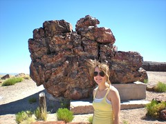 Rachel at the Petrified Forest