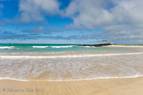 RYALE_Galapagos-266