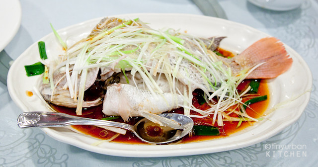 Ginger Scallion Steamed Fish