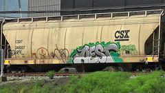 CHIP7 & AEST (BLACK VOMIT) Tags: train graffiti ol south grain 7 dirty richmond mc dos va chip d30 mayhem hopper freight ssp wh chip7 ocult aest grainer aest2