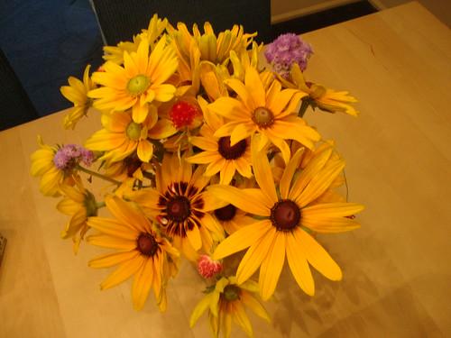 Princeton farmer's mkt flowers 7/31/11