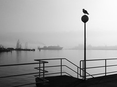kiel_morgens01_bw (ghoermann) Tags: morning harbour balticsea fjord kiel frde
