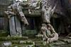 Preah Khan (Sacred Sword) (Keith Kelly) Tags: stone religious temple ancient sandstone asia cambodia southeastasia buddhist ruin kingdom holy sacred kh siemreap angkor treeroots preahkhan laterite kampuchea jayavarmanvii bayonstyle sacredsword late12thcentury