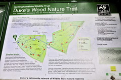 Dukes wood nature trail (petelovespurple) Tags: oil bp oilfield wildlifetrust noddingdonkeys nottinghamshirewildlifetrust