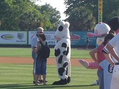 Coworker in Cow Suit