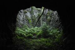(Sameli) Tags: world urban 3 suomi finland underground 1 helsinki war military exploring wwi entrance tunnel storage bunker opening cave shelter exploration 1915 base ue urbex i3