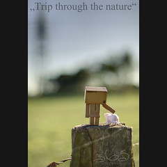 Trip through the nature (Oliver Totzke) Tags: canon toy 50mm mark f14 days ii mk2 5d 365 ef danbo revoltech danboard 5dmk2