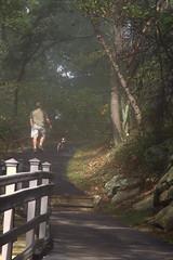 Pinnacle Overlook Trail