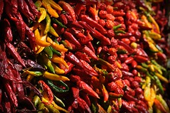 Red (& yellow) hot chili peppers (iana) Tags: red yellow south giallo napoli naples peppers rosso peperoncini redhotchilipeppers sud