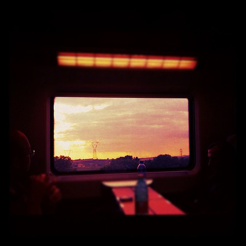 Looking through the window #window #train #sunset