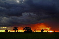Anger Management (Jonny Hirons) Tags: lighting york trees light sunset red summer sky orange sun clouds rural golden evening glow fierce dusk yorkshire silhouettes vivid anger angry handheld sanyo soe s120 mygearandme blinkagain