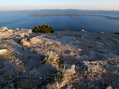 On the Top of the Adriatic 1 (Union*) Tags: sea island rocks croatia more vegetation karst gora brac hvar adriatic otok jadran dalmatia dalmacija bra morje vidova