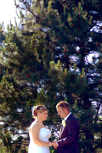 170 - Wedding
