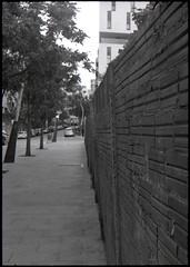 The Wall (Salva G.) Tags: barcelona bw white black muro byn film blanco wall analog pen 35mm y kodak tmax negro olympus bn negative 400 frame half scanned colonia ft pelicula asa halfframe f18 35 mur blanc negre analogica analogic 38mm castells analogico fzuiko pel·licula