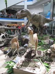 Oviraptors and Tyrannosaurus (wallygrom) Tags: england brighton shoppingmall eastsussex dinosaurs churchillsquare