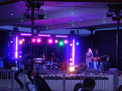 The Back Doors gig at Bray Summerfest 2011
