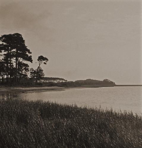 Burtons Shore (4)