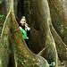 Atrás das raízes tem um dos grandes