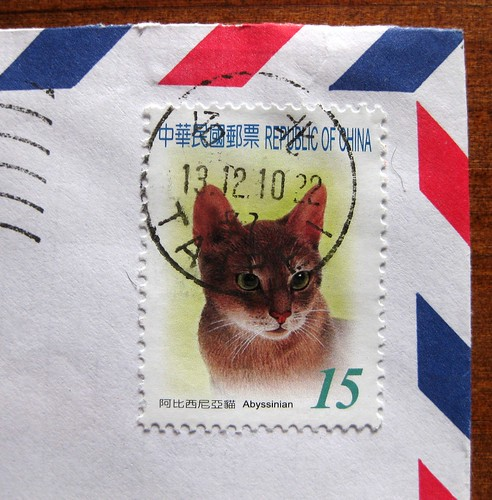 Abyssinian cat stamp from China