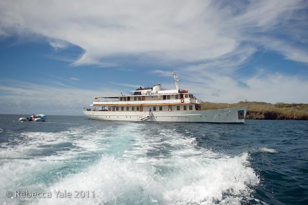 RYALE_Galapagos-295