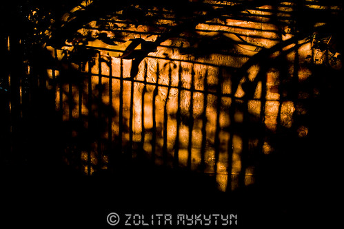 On grave reflection by xxx zos xxx