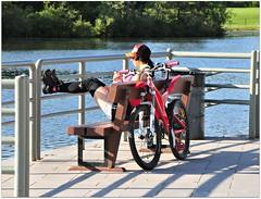 Relaxing by the lake (Stella Blu) Tags: stella summer people woman lake canada girl bike bench sitting edmonton blu relaxing alberta sit railing seated gamewinner nikkor18200 wearingahat 15challengeswinner nikond300 thechallengefactory harwelakpark herowinner pregamesweepwinner