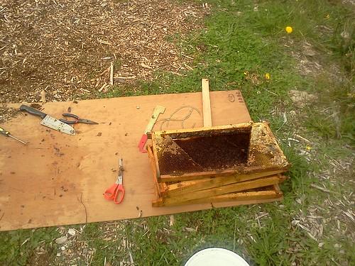 hive transfer materials