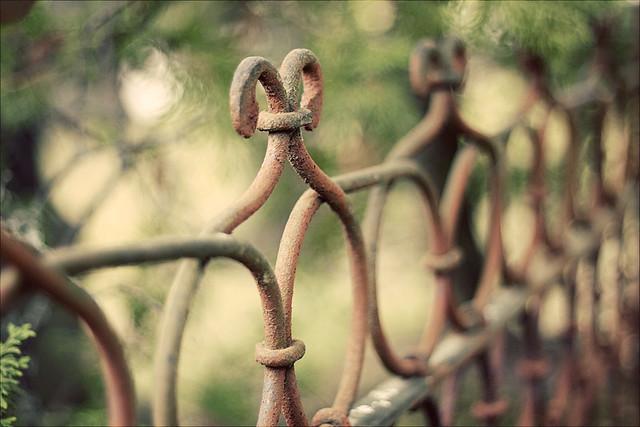IMAGE: http://farm7.static.flickr.com/6014/5990253073_1ff72e5332_z.jpg