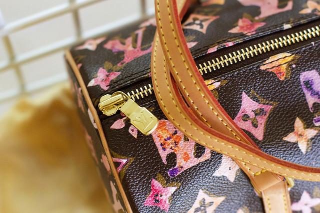 2008 S/S LV Aquarelle Papillon