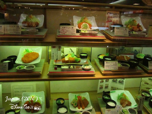 Japan Plastic Foods  (13)