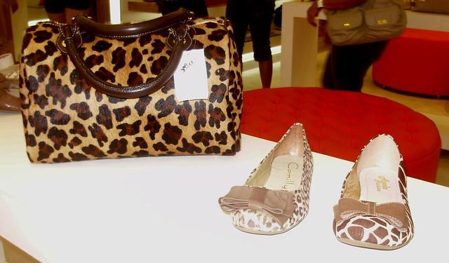 Gato & Sapato