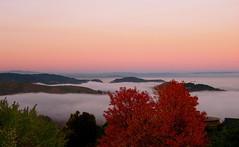Above the fog (skuehn) Tags: california autumn trees sky fall fog clouds hills ridge fawn sleepyhollow sananselmo terralinda