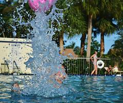 up (Laurarama) Tags: family pink summer water pool ball nikon play squarecrop odc 2011 comingorgoing d3100 gapaug