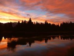Golden Fucia Blue Sky (PelicanPete) Tags: sunset summer vacation mountains west reflection nature beauty unitedstates scenic jackson wyoming grandtetons peaks jacksonhole thegrand schwabacherslanding beavercreekwyoming