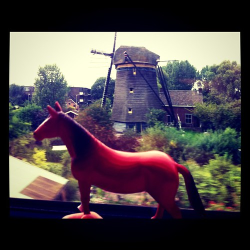 Cavalo viajando