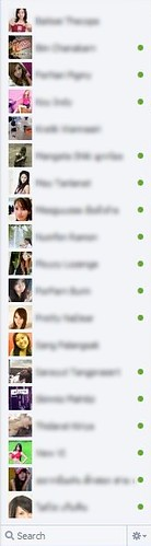 Facebook Chat with 19 friends in Firefox height 647 pixels