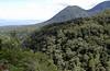 Mount Kitanglad (Bram Demeulemeester - Birdguiding Philippines) Tags: forests mindanao bukidnon philipppines philippineeagle bramdemeulemeester mountkitanglad malabalay birdguidingphilippines birdingtoursphilippines philippineeagleviewpoint