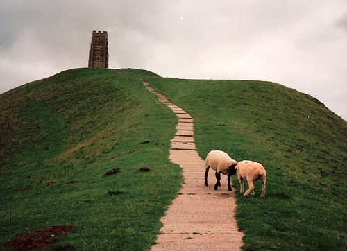 Glastonbury Tor July 1991