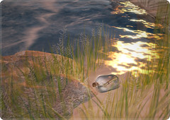 05/08/2011 (ARGRACE) Tags: sea bottle secondlife argrace