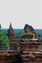 Beheaded too (Icy_Aj) Tags: sunset temple pagoda buddha burma buddhism myanmar horsecart pagan bagan shwesandaw lacquerware buddhismarchitecture ricedish templearchitecture goldenland