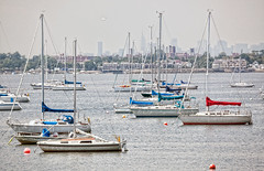City Sailboats (JMS2) Tags: summer skyline boats thebronx sailboats hazy cityisland eastchesterbay