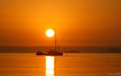 dans la ligne du soleil....un matin... (lorss29 (pause )) Tags: bretagne bzh finistre stanne stpoldelon lorss29