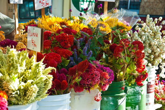 farmers market oct 1_13