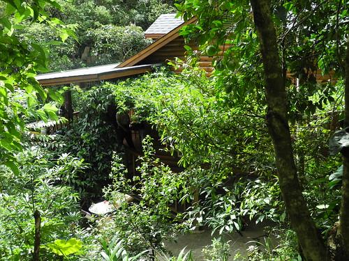 不能申請為環境信託的農地,吳杰峰夫妻便蓋成簡單的農舍,師法自然,住了下來。