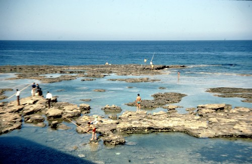 Fishing In Rock Pools.